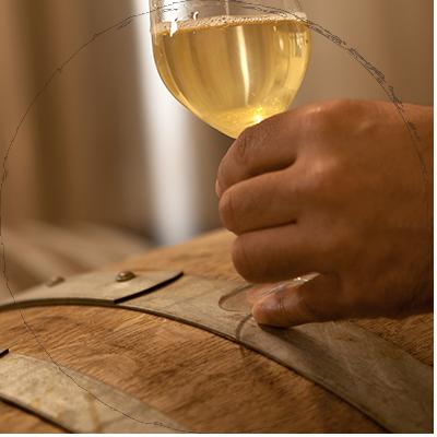degustation-des-pieds-et-des-vins2